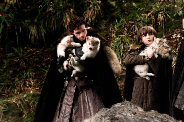 robb-bran-direwolves