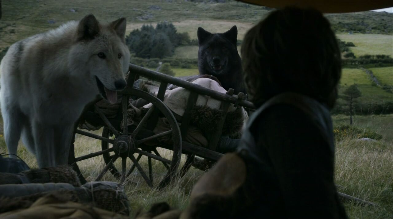 game_of_thrones_-_03x02_-_dark_wings_dark_words-720p-immerse_291249